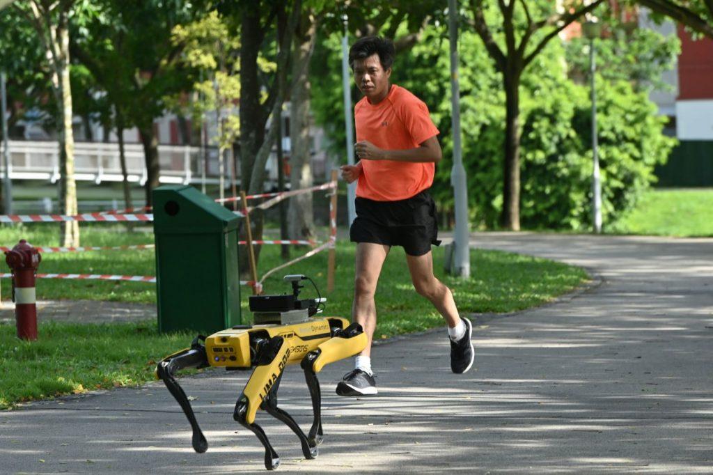 Фото: пять роботов, которые помогают человечеству справиться с пандемией