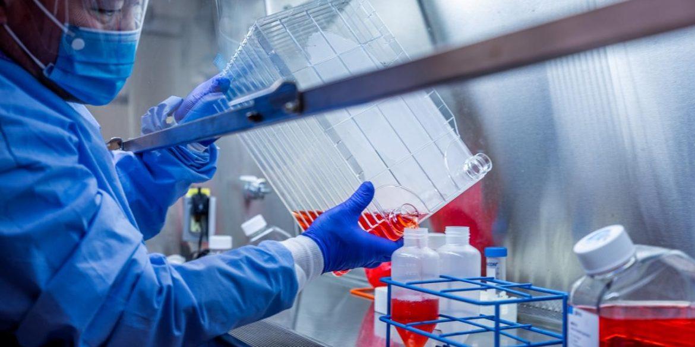 Українські вчені з'ясували, що інші коронавіруси можуть допомогти виробити імунітет до COVID-19