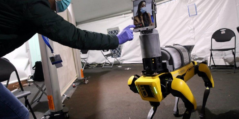Boston Dynamics створили робота-доктора для безконтактної допомоги пацієнтам з COVID-19