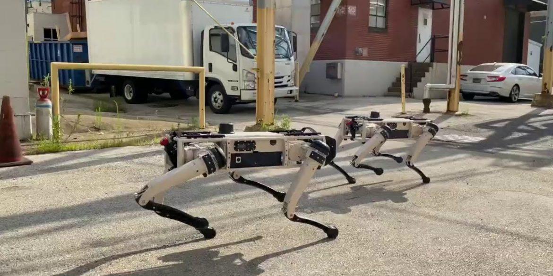 10 роботів, з якими ми пережили 2020 рік