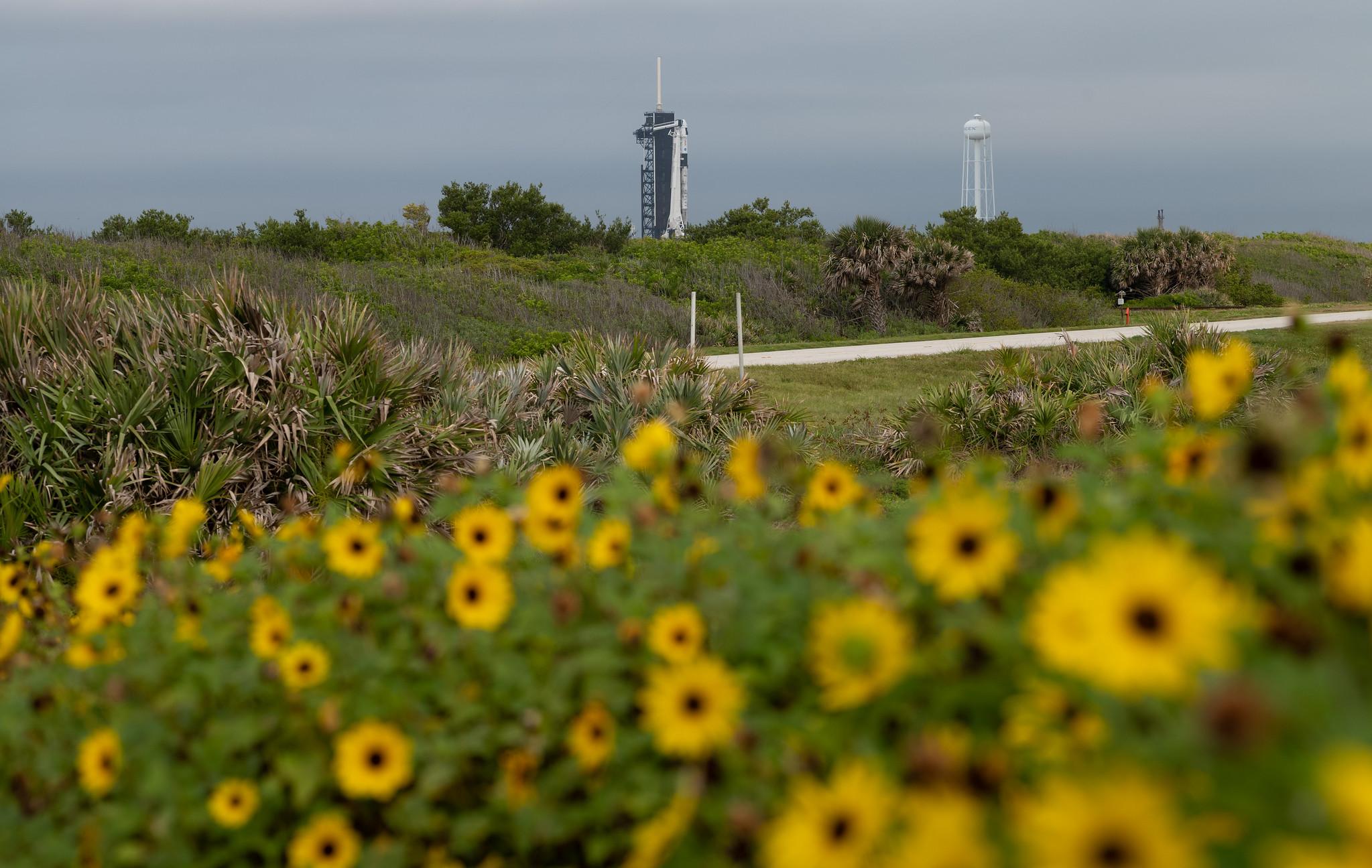 Фото: NASA та SpaceX готуються до польоту Crew-2