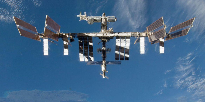 NASA и SpaceX доставят на МКС кальмаров для экспериментов