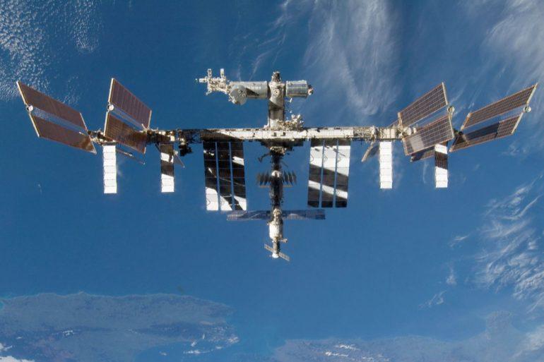 NASA і SpaceX доставлять на МКС кальмарів для експериментів