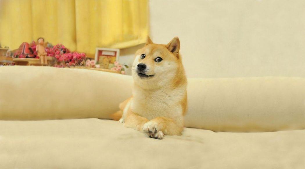 Популярний мем Doge продали у форматі NFT на онлайн-аукціоні за $4 млн