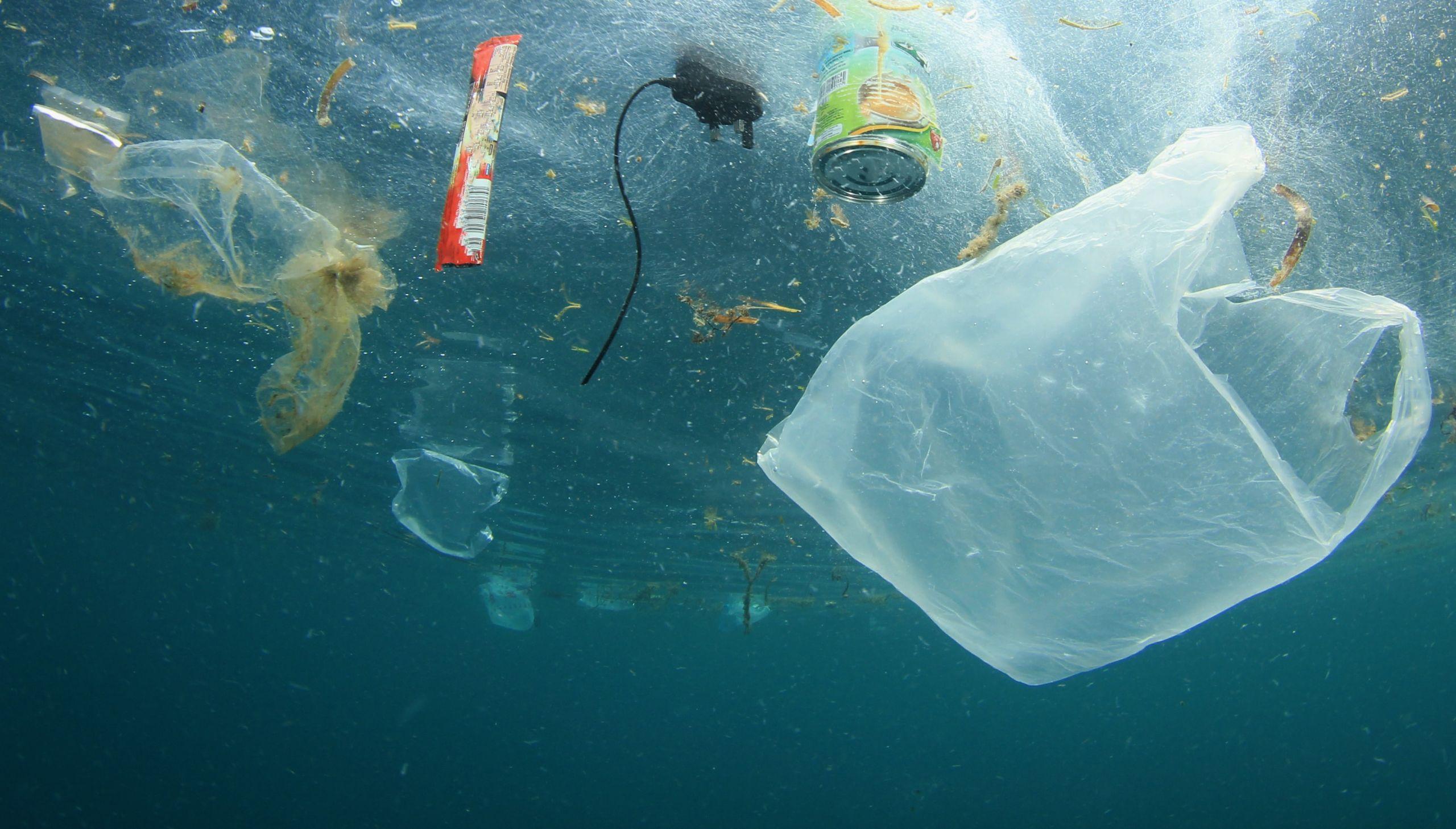 Яке сміття найсильніше забруднило світовий океан